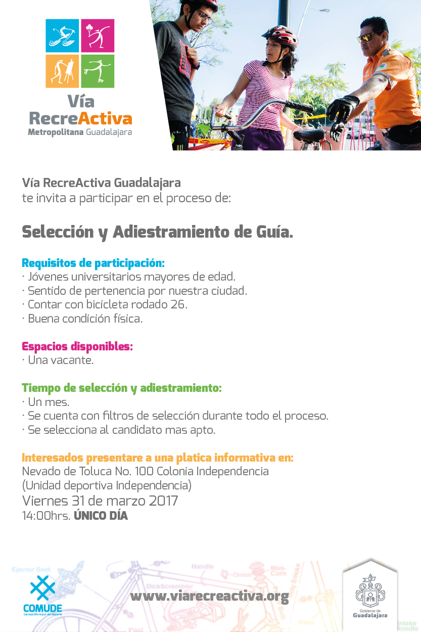 LINK POST VIA solicitamos guias_texto